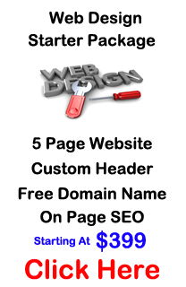 Web Design and Hosting 399 - Web Design Services Small Business